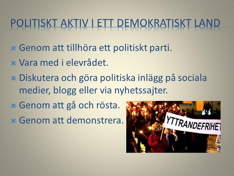 Politiskt aktiv i ett demokratiskt land