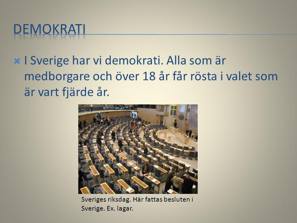 demokrati I Sverige har vi demokrati. Alla som är medborgare och över 18 år får rösta i valet som är vart fjärde år.