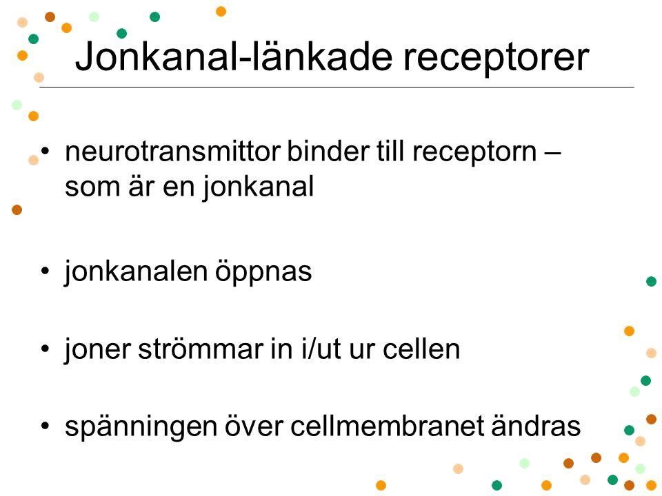 Jonkanal-länkade receptorer