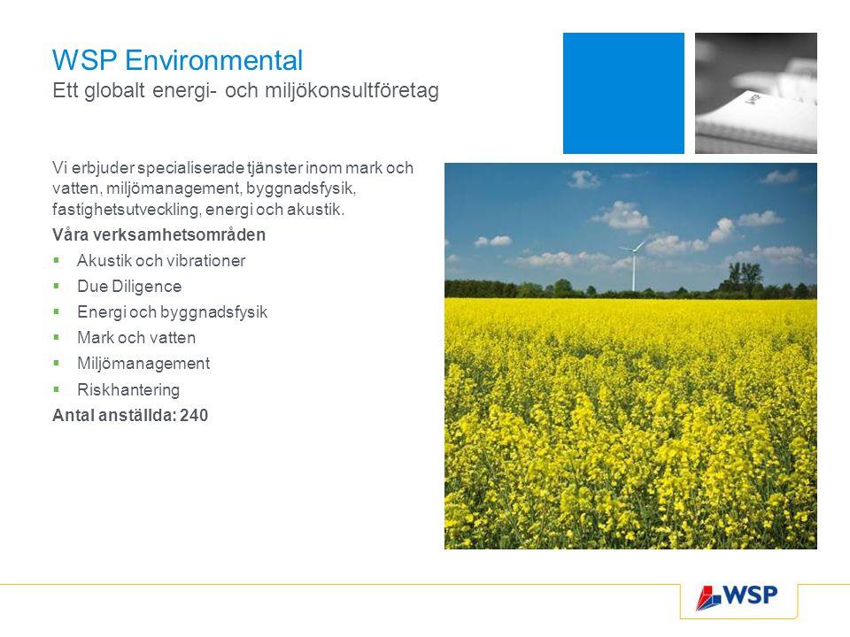 WSP Environmental Ett globalt energi- och miljökonsultföretag