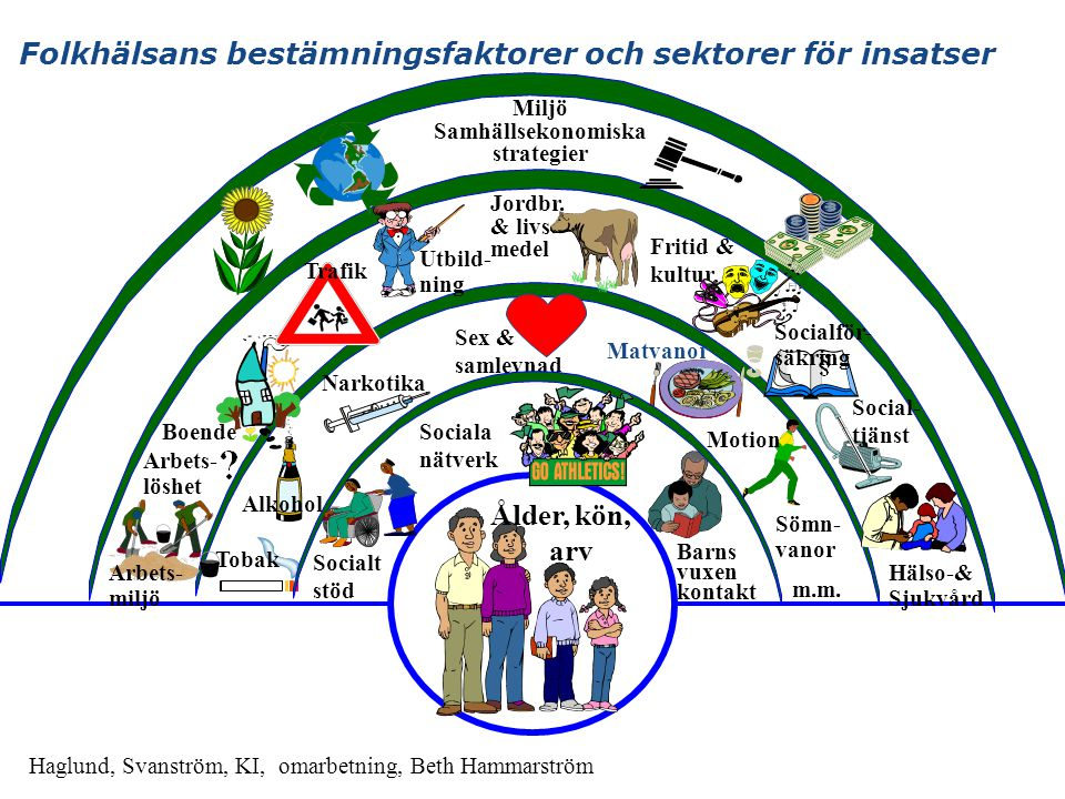 Folkhälsans bestämningsfaktorer och sektorer för insatser