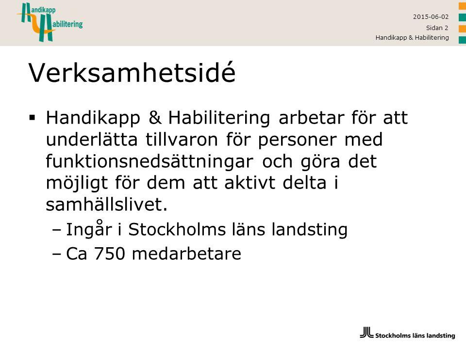 2017-04-16 Handikapp & Habilitering. Verksamhetsidé.