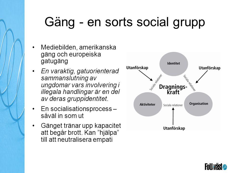 Gäng - en sorts social grupp