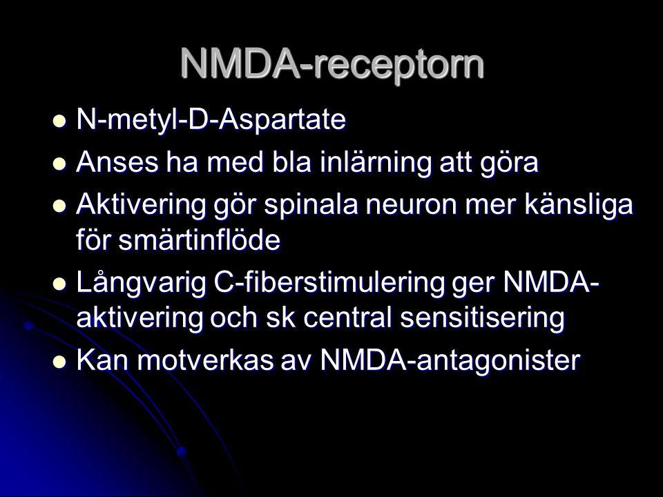NMDA-receptorn N-metyl-D-Aspartate Anses ha med bla inlärning att göra