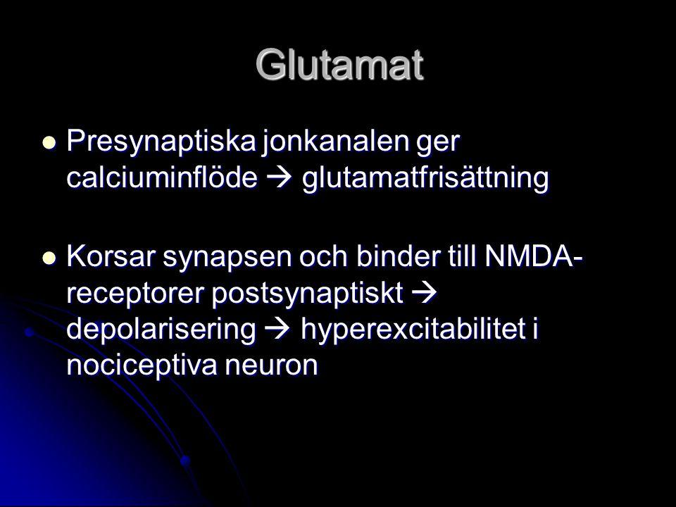 Glutamat Presynaptiska jonkanalen ger calciuminflöde  glutamatfrisättning.
