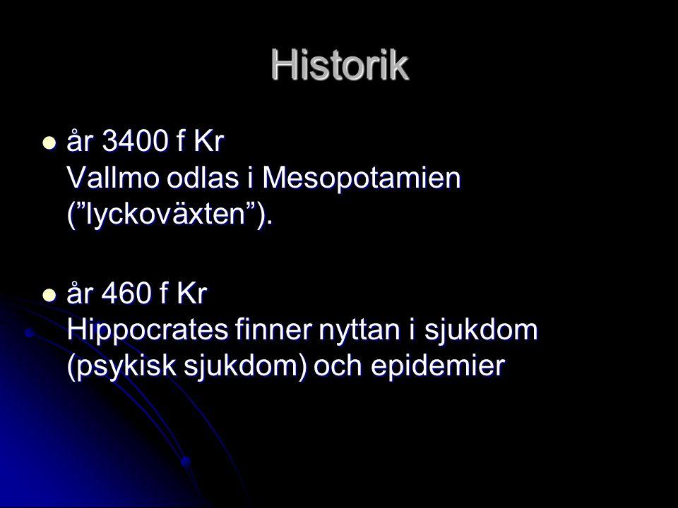 Historik år 3400 f Kr Vallmo odlas i Mesopotamien ( lyckoväxten ).