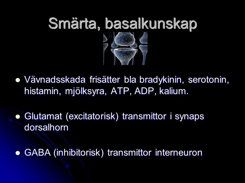 Smärta, basalkunskap Vävnadsskada frisätter bla bradykinin, serotonin, histamin, mjölksyra, ATP, ADP, kalium.