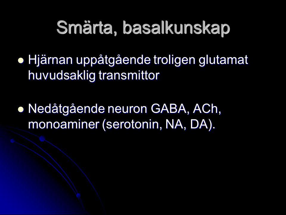 Smärta, basalkunskap Hjärnan uppåtgående troligen glutamat huvudsaklig transmittor.
