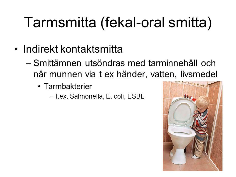 Tarmsmitta (fekal-oral smitta)