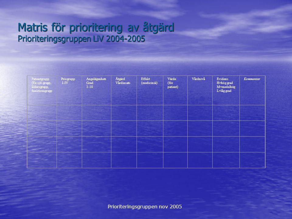 Matris för prioritering av åtgärd Prioriteringsgruppen LiV 2004-2005