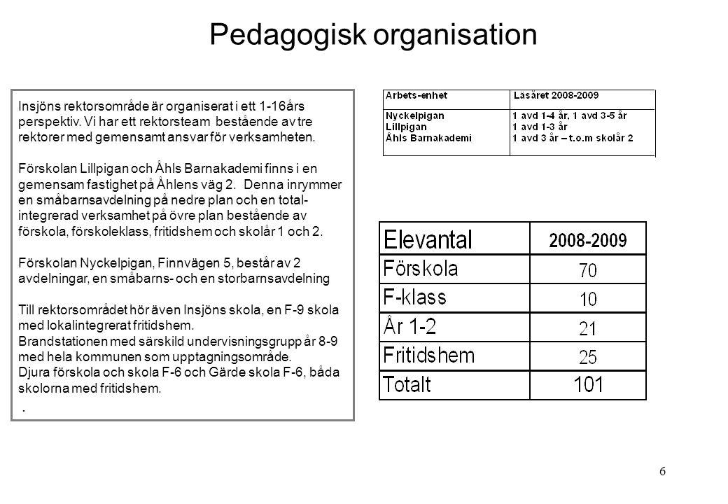 Pedagogisk organisation
