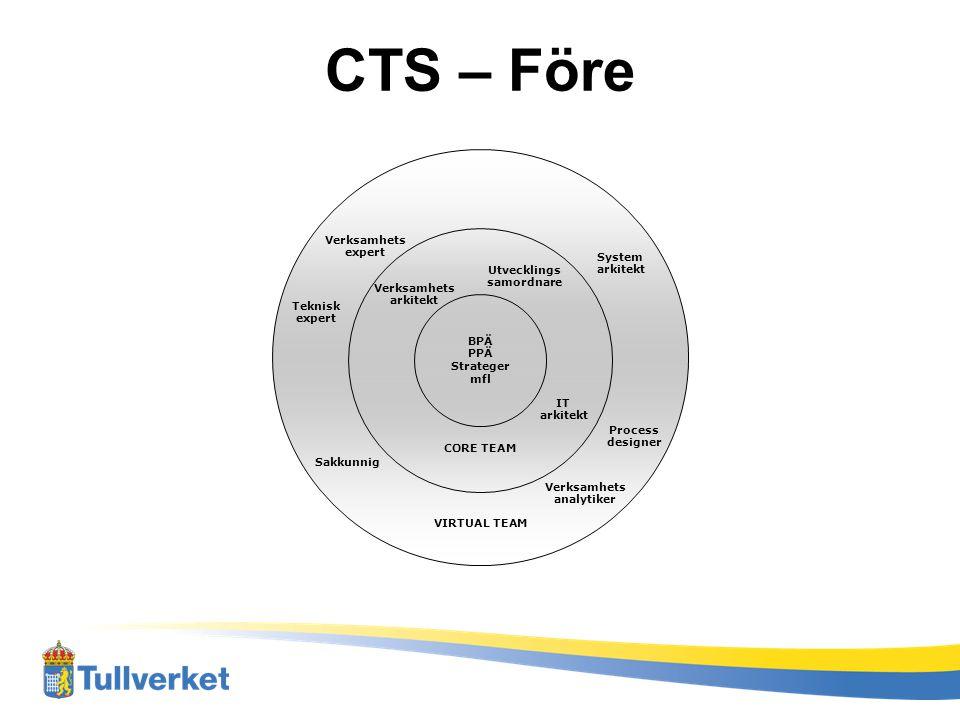 CTS – Före organisation Verksamhets expert System arkitekt