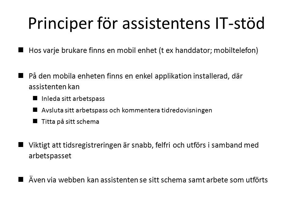 Principer för assistentens IT-stöd