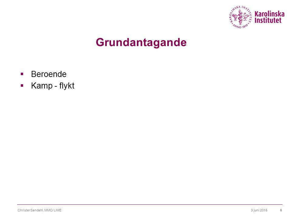 Grundantagande Beroende Kamp - flykt Christer Sandahl, MMC/ LIME