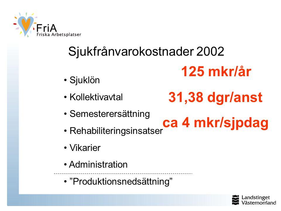 Sjukfrånvarokostnader 2002