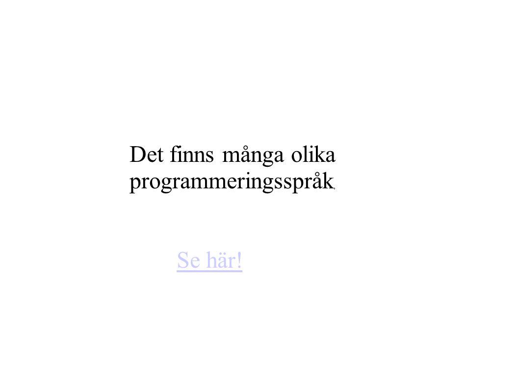Det finns många olika programmeringsspråk,