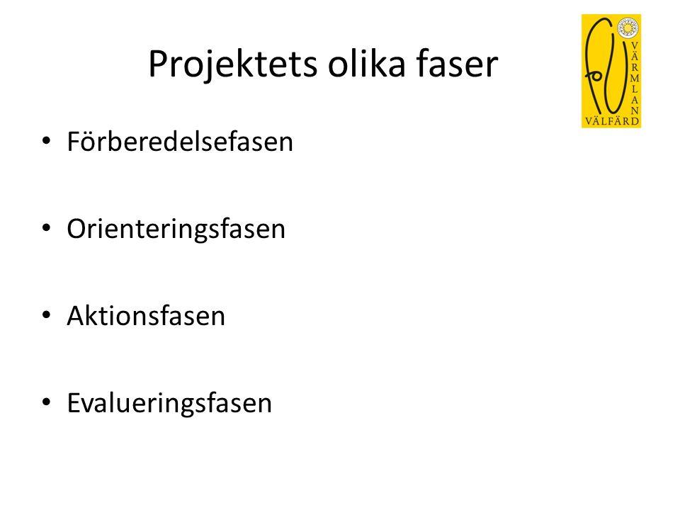 Projektets olika faser
