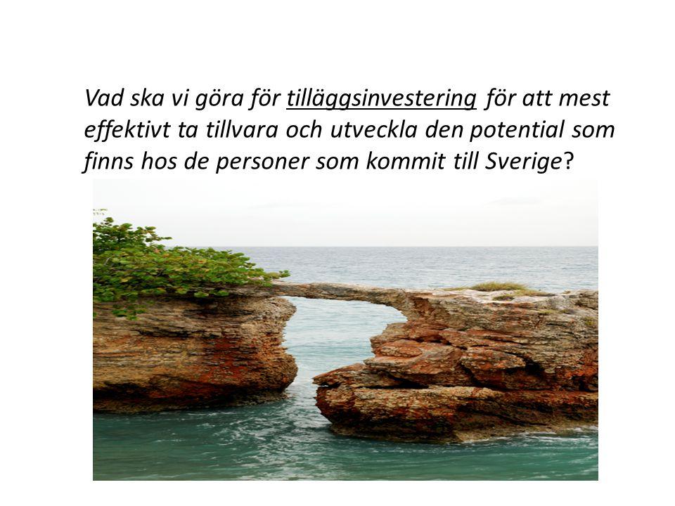 Vad ska vi göra för tilläggsinvestering för att mest effektivt ta tillvara och utveckla den potential som finns hos de personer som kommit till Sverige