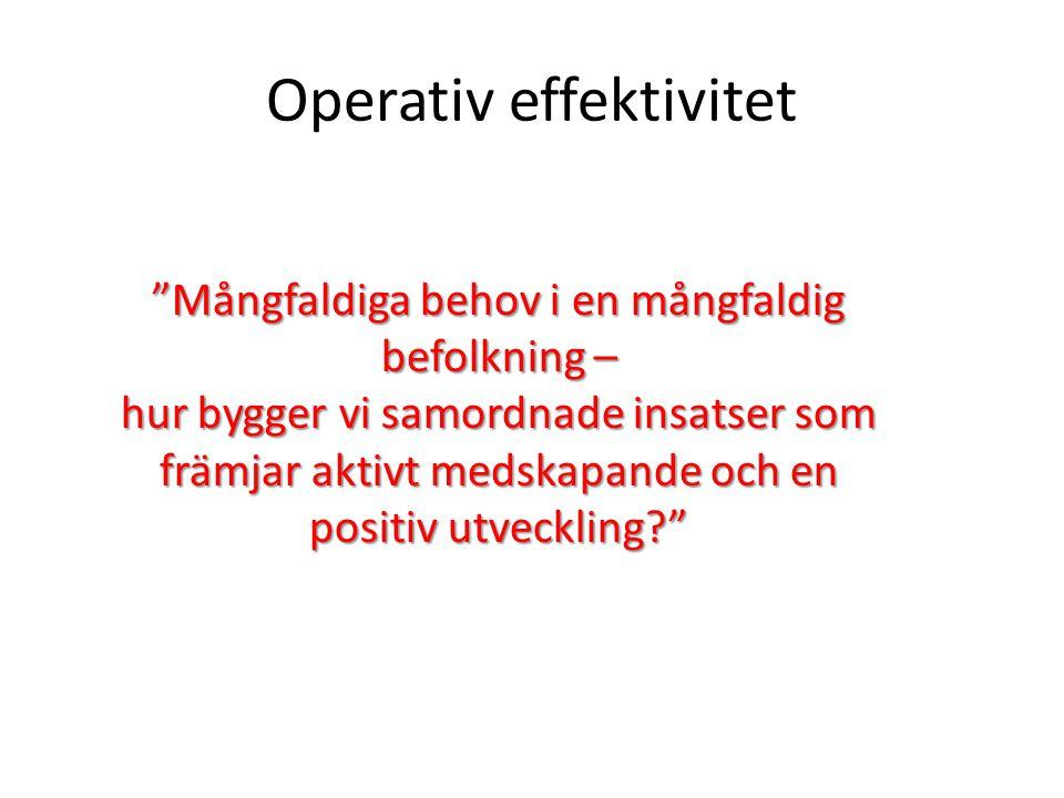 Operativ effektivitet