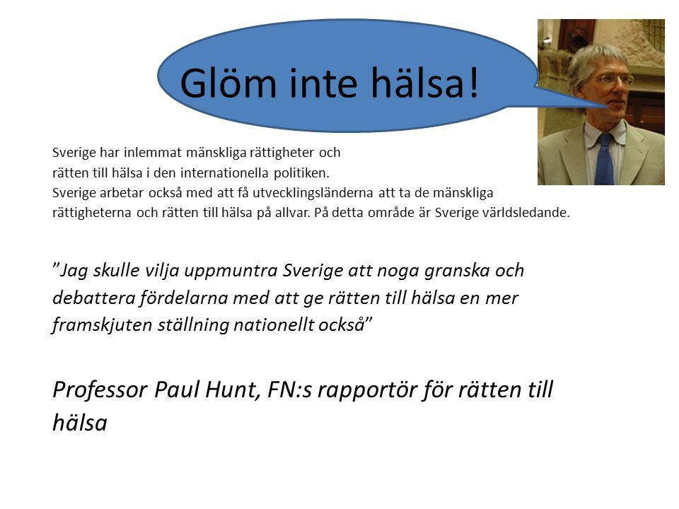 Professor Paul Hunt, FN:s rapportör för rätten till hälsa