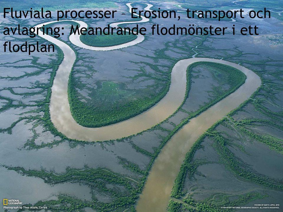 Fluviala processer – Erosion, transport och avlagring: Meandrande flodmönster i ett flodplan
