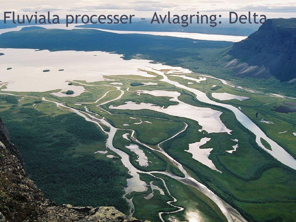 Fluviala processer – Avlagring: Delta