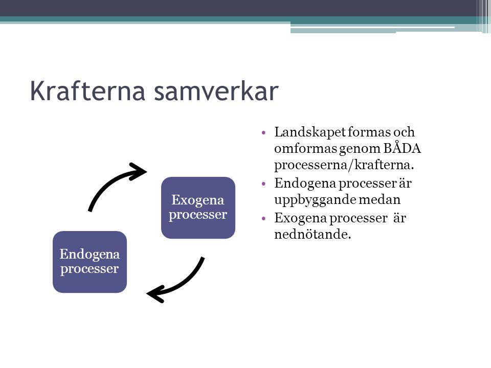 Krafterna samverkar Endogena processer. Exogena processer. Landskapet formas och omformas genom BÅDA processerna/krafterna.