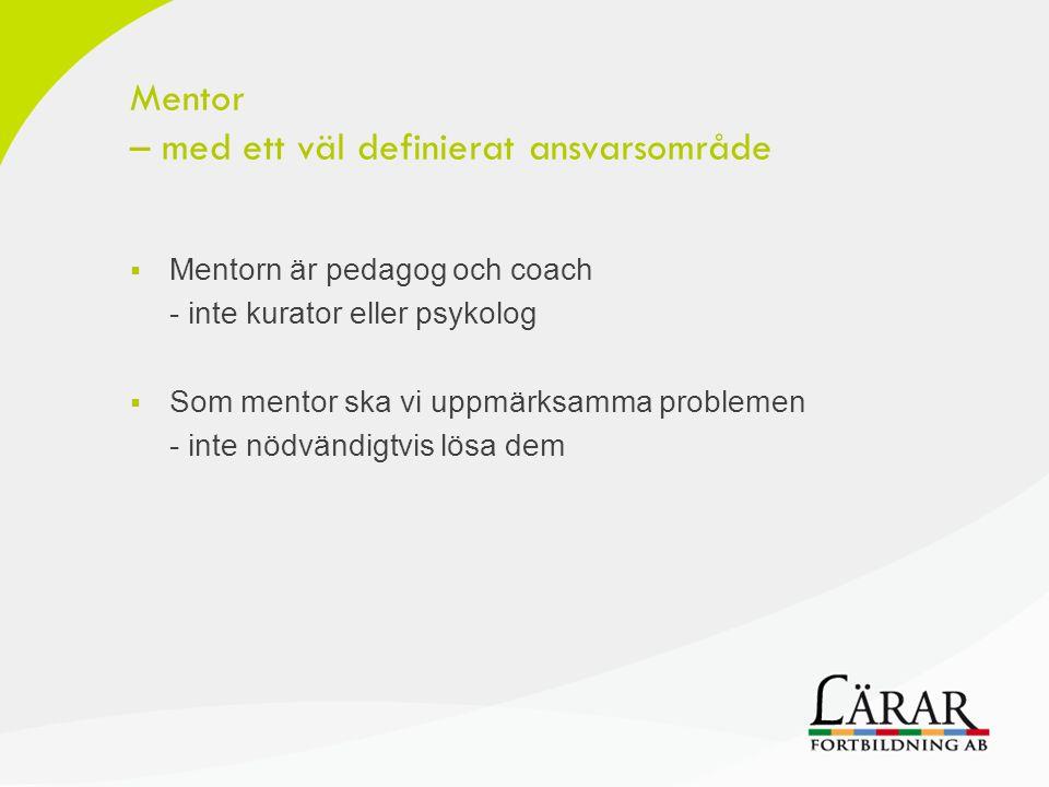 Mentor – med ett väl definierat ansvarsområde