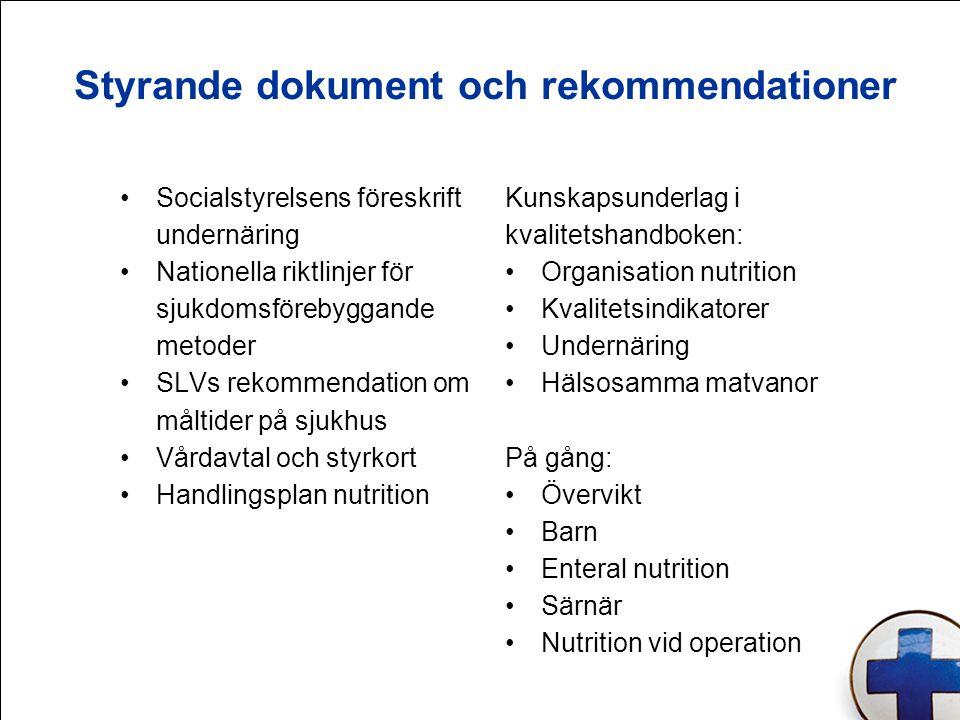Styrande dokument och rekommendationer