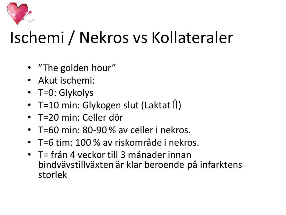 Ischemi / Nekros vs Kollateraler
