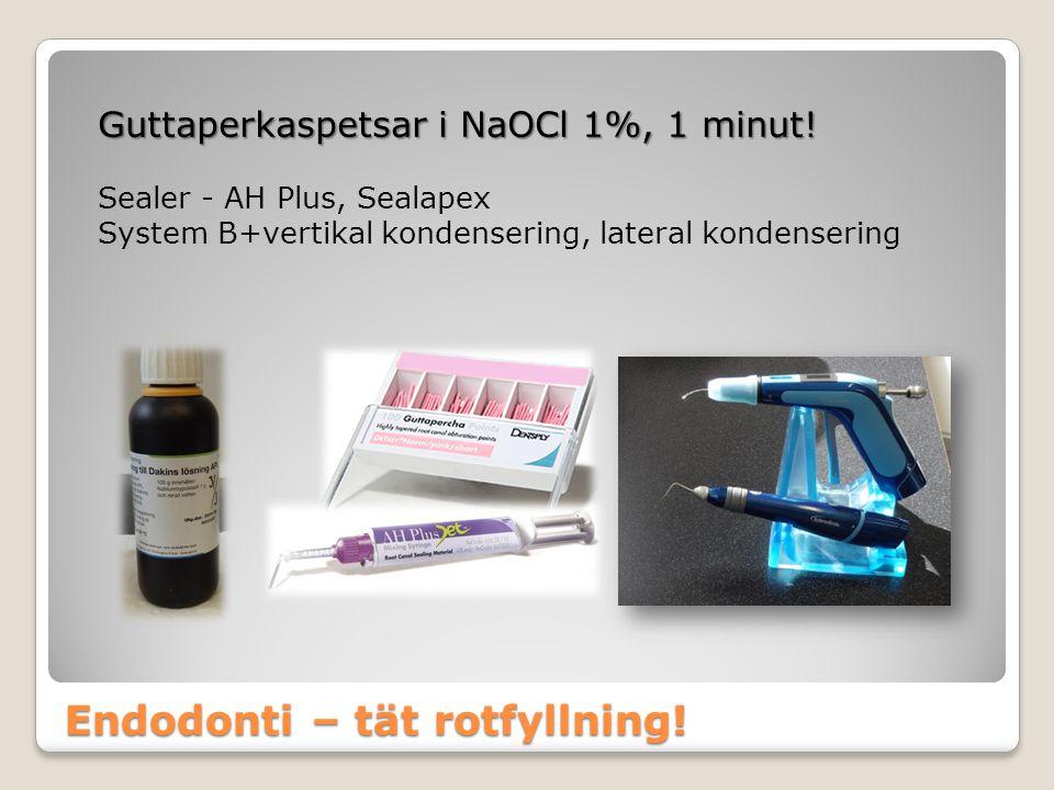 Endodonti – tät rotfyllning!