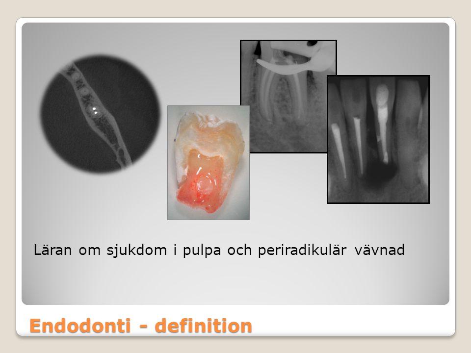 Endodonti - definition
