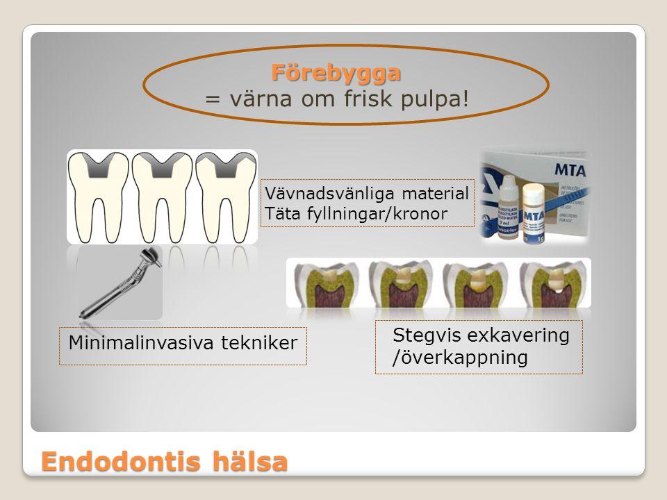 Endodontis hälsa Förebygga = värna om frisk pulpa! Stegvis exkavering