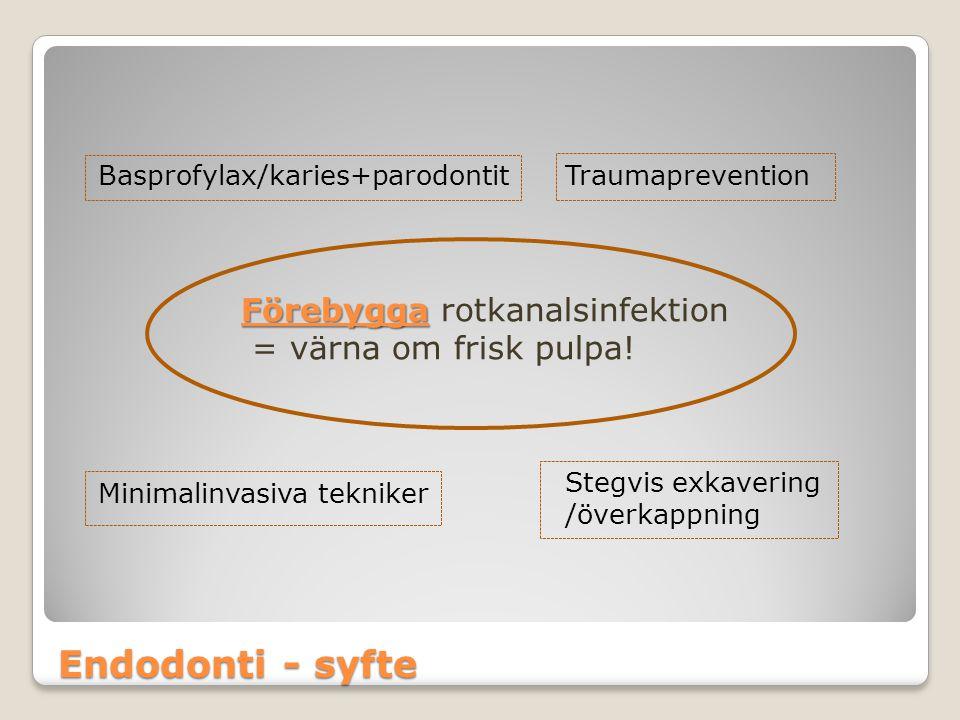 Endodonti - syfte Förebygga rotkanalsinfektion = värna om frisk pulpa!