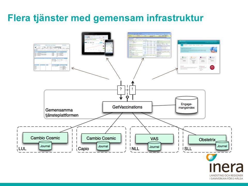 Flera tjänster med gemensam infrastruktur