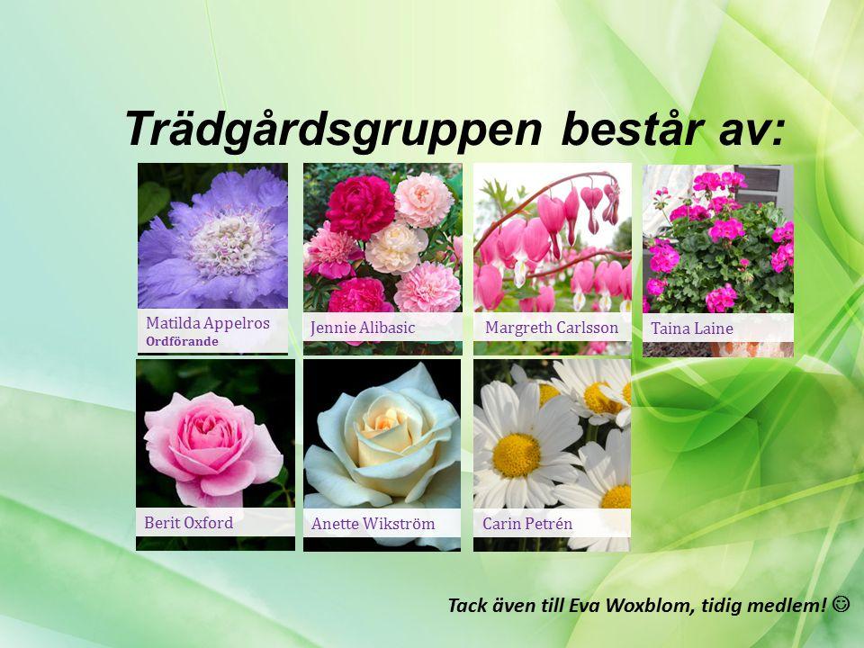 Trädgårdsgruppen består av: