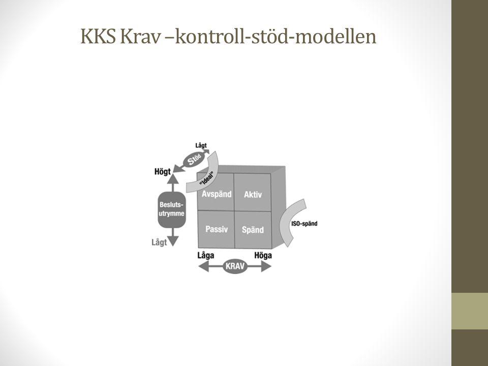 KKS Krav –kontroll-stöd-modellen