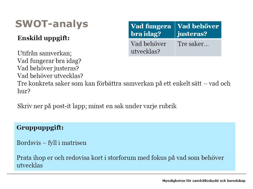 SWOT-analys Vad fungera bra idag Vad behöver justeras