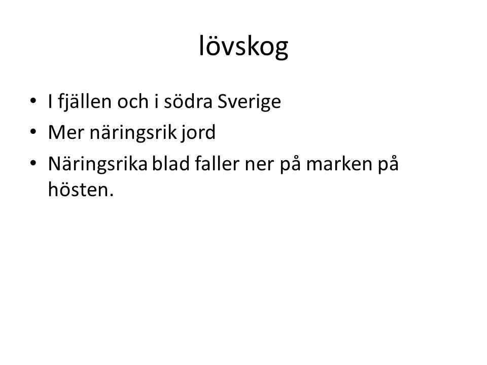 lövskog I fjällen och i södra Sverige Mer näringsrik jord