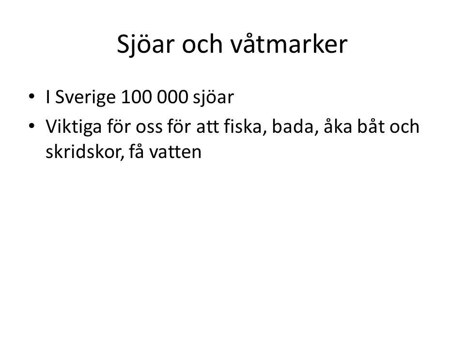 Sjöar och våtmarker I Sverige 100 000 sjöar