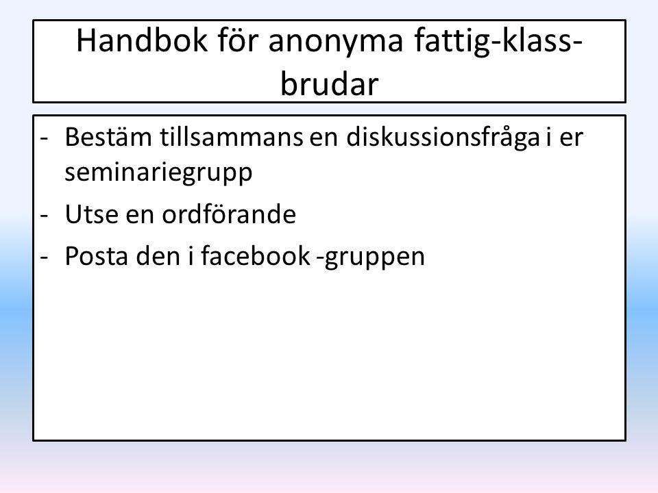 Handbok för anonyma fattig-klass-brudar