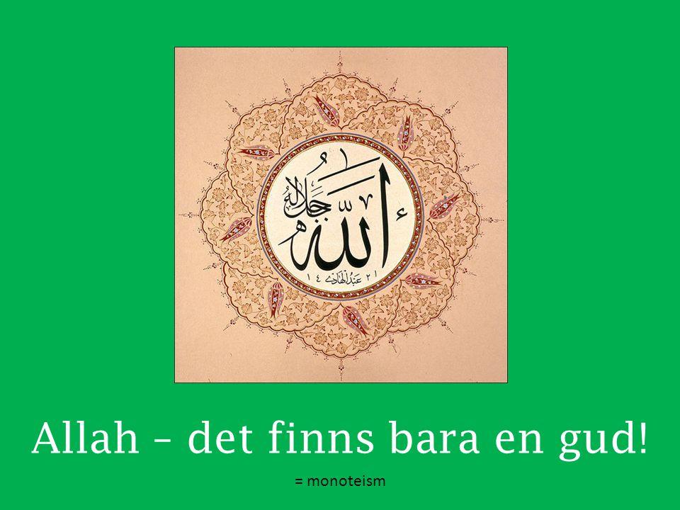 Allah – det finns bara en gud!