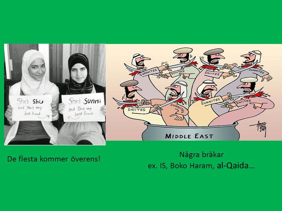 ex. IS, Boko Haram, al-Qaida…