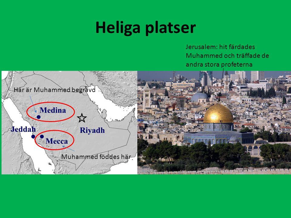 Heliga platser Jerusalem: hit färdades Muhammed och träffade de andra stora profeterna. Här är Muhammed begravd.