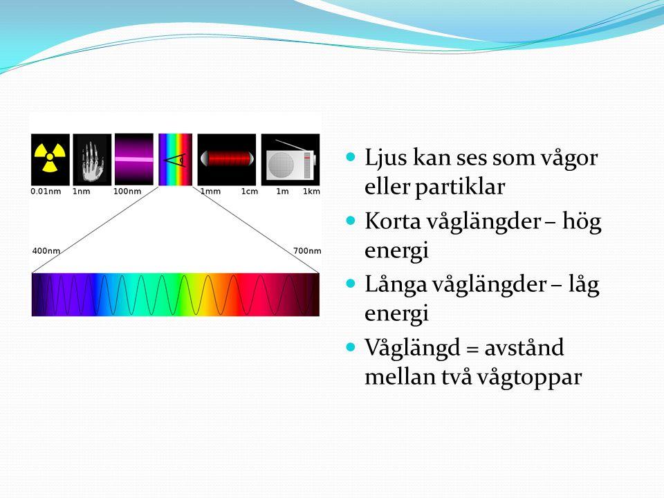 Ljus kan ses som vågor eller partiklar