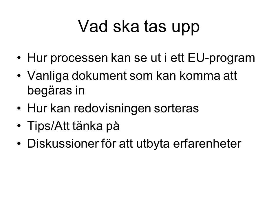 Vad ska tas upp Hur processen kan se ut i ett EU-program