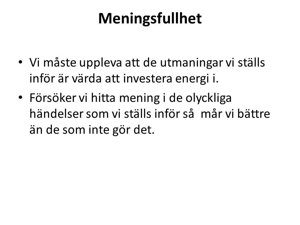 Meningsfullhet Vi måste uppleva att de utmaningar vi ställs inför är värda att investera energi i.