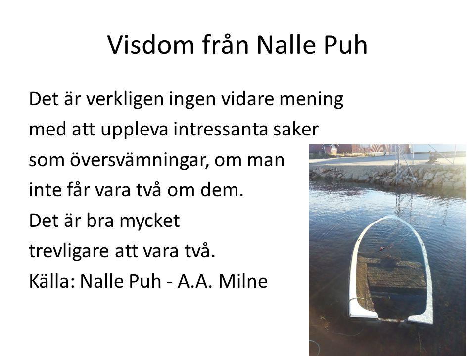 Visdom från Nalle Puh