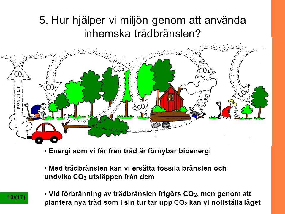 5. Hur hjälper vi miljön genom att använda inhemska trädbränslen