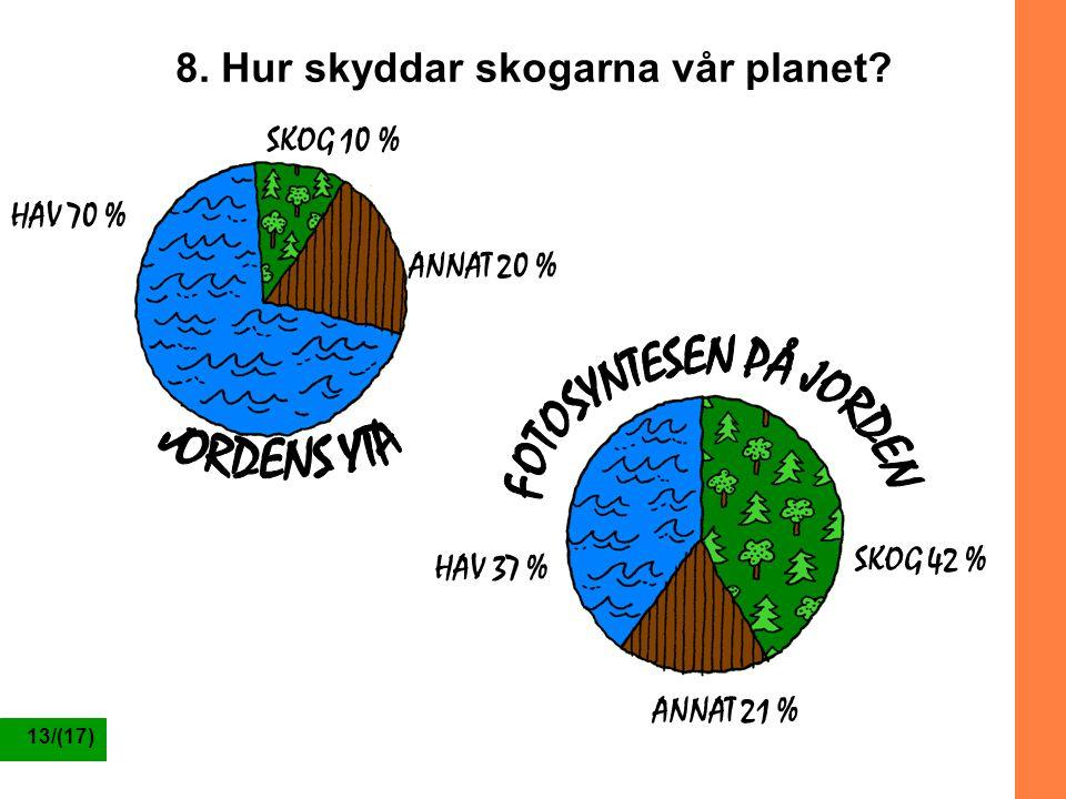 8. Hur skyddar skogarna vår planet